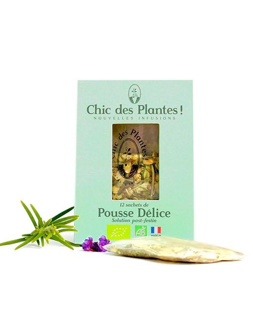 Infusion Pousse Délice - bio - Chic des Plantes