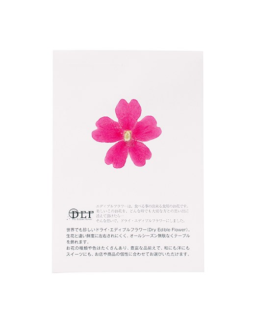 Fleurs comestibles séchées de verveine rose - Neworks