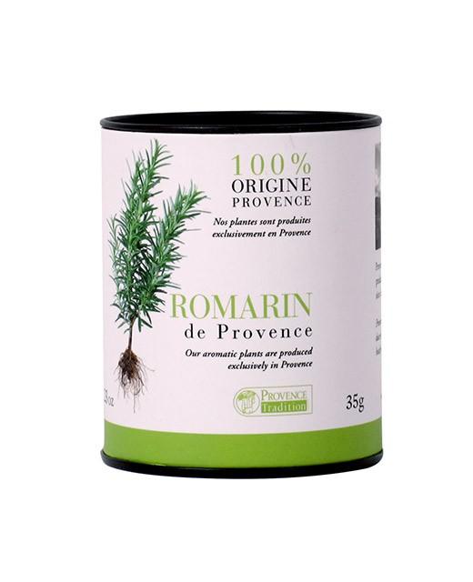 Romarin - Provence Tradition
