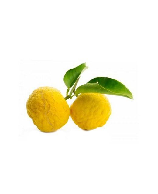 Yuzu frais de Kito - Bando Foods