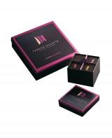 Coffret de chocolats Couleur de Bourgogne - 16 chocolats - Fabrice Gillotte