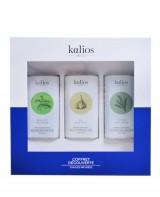 Coffret découverte - huiles infusées - Kalios