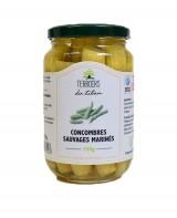 Concombres sauvages marinés - pickles - Terroirs du Liban