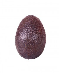 Avocat - Edélices Primeur