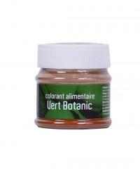 Colorant alimentaire Vert Botanic - Les Artistes