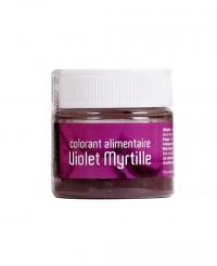 Colorant alimentaire Violet Myrtille - Les Artistes