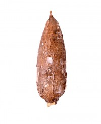 Manioc - Edélices