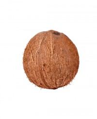 Noix de coco - Edélices