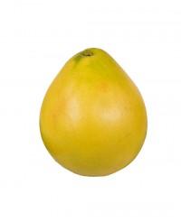 Pomelos chinois gros - Edélices Primeur