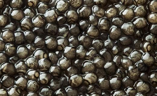 Caviar Beluga Impérial 50g - Kaviari