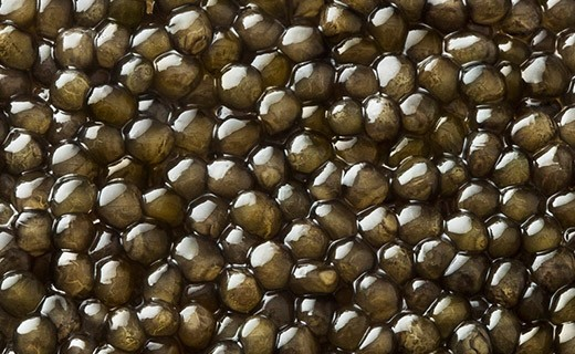 Caviar Osciètre Gold 30g - Kaviari