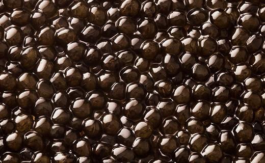 Caviar Osciètre Prestige 50g - Kaviari