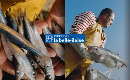 Sardines à l'huile de tournesol - La Belle-Iloise
