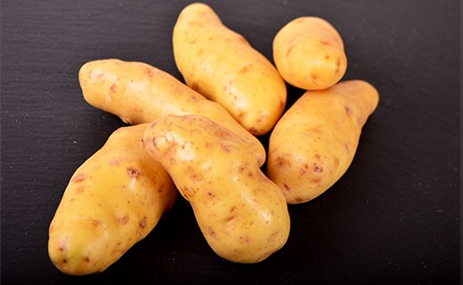 Pomme de terre Ratte moyenne - Edélices Primeur