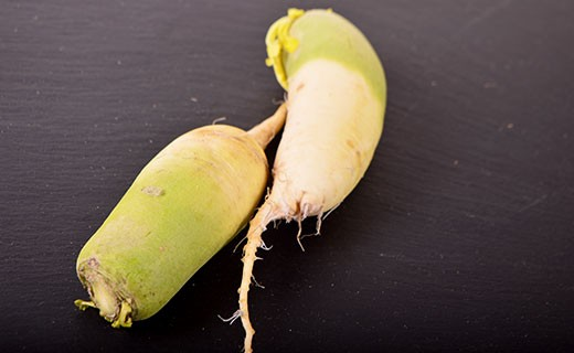 Radis green meat -  vert - Edélices Primeur