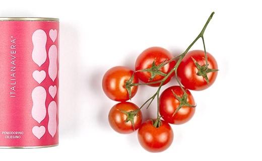 Tomates cerises - Pomodorino ciliegino - Italianavera