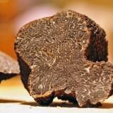 Conseils de préparation pour cuisiner la truffe
