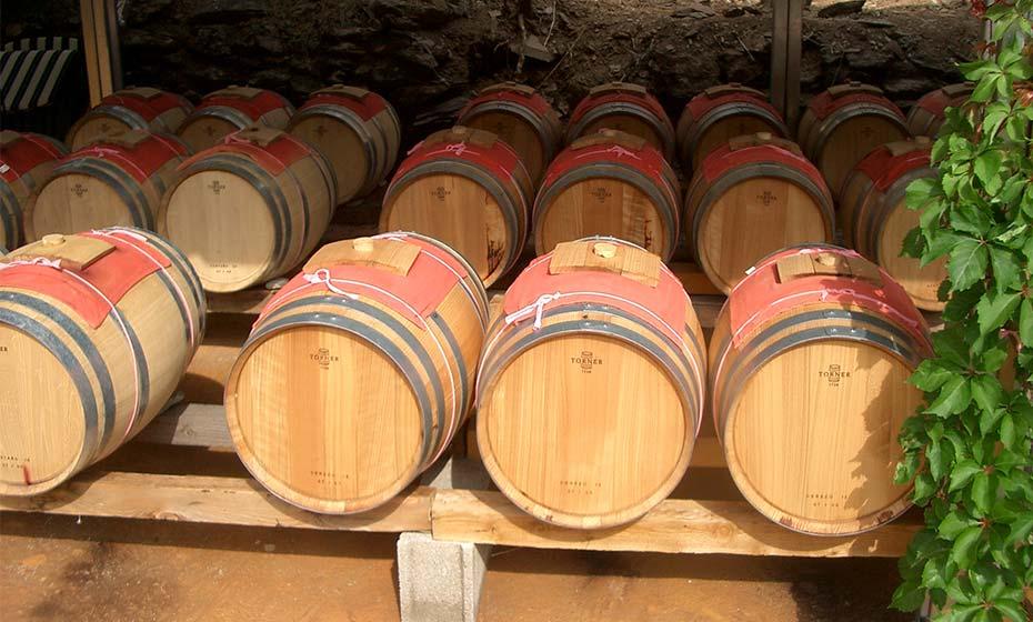 Quelles différences entre le vinaigre de Banyuls et le vinaigre balsamique ?
