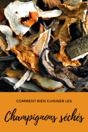 Comment bien cuisiner les champignons séchés ?