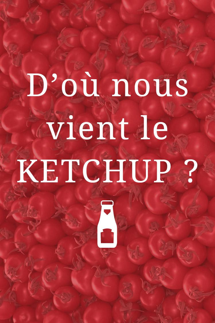D'où nous vient le Ketchup ?
