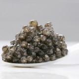 Conseils pour déguster le caviar