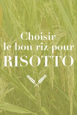 Choisir le bon riz pour risotto