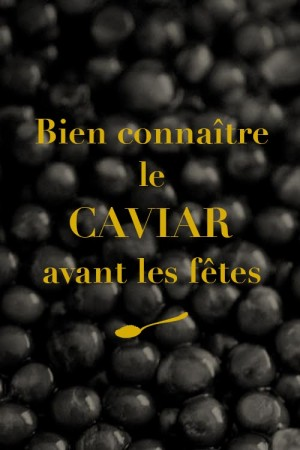 Bien connaître le caviar avant les fêtes