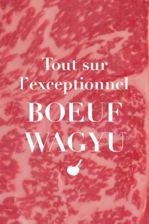 Tout sur l'exceptionnel boeuf Wagyu