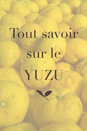 Tout savoir sur le yuzu