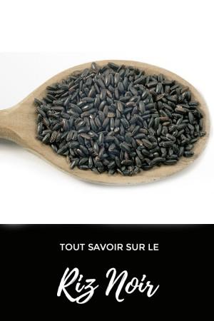 Tout savoir sur le riz noir