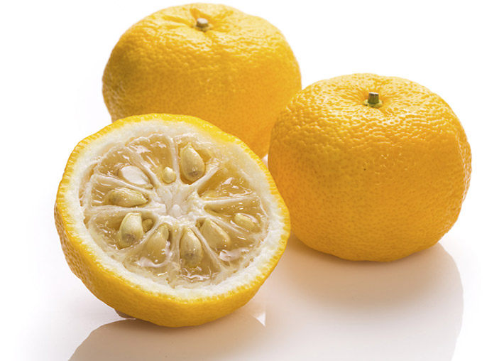 yuzu-agrume-fruit