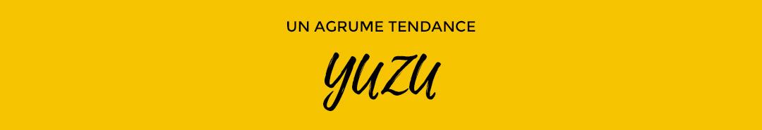 yuzu-agrume-tendance