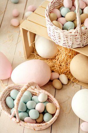La chasse aux œufs Edélices
